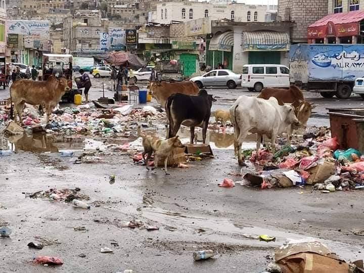 هكذا يبدو الشارع الرئيسي في مدينة البيضاء في عهد الحوثيين(صورة)